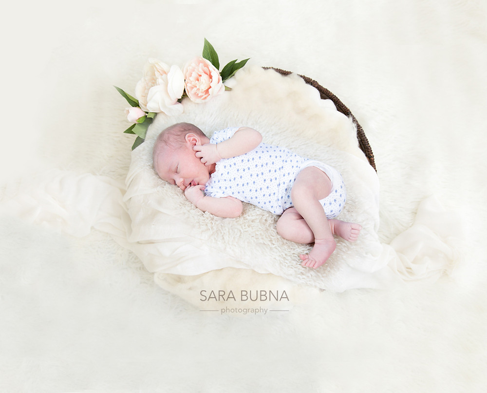 SARA BUBNA photography, Sara Bubna, Fotografin, Salzburg, zertifiziert, QAP, EP, Fotostudio, Leopoldskron, Fotograf, Neugeborenenfotos, Baby foto, Newborn photography, weiss, Korb, Blumen, Meisterfotografin,