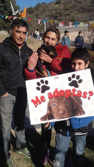 """""""Tenemos que educar y lograr que tomen conciencia sobre la tenencia responsable de mascotas&quo"""