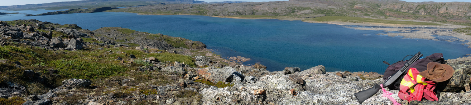 Panorama of Proterozoic sediments, cut by mafic dikes, deposited on Archean basement gneisses; Nunuvat