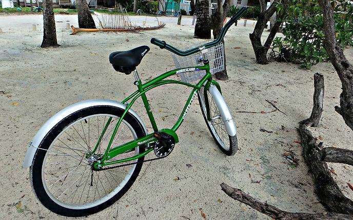 Bicycles Rentals | Hopkins Village