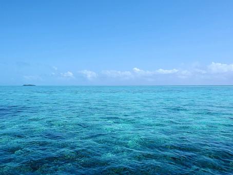 Southern Belize Barrier Reef   Near Hopkins Village
