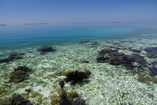 Belize Southern Barrier Reef - Stann Creek District.JPG