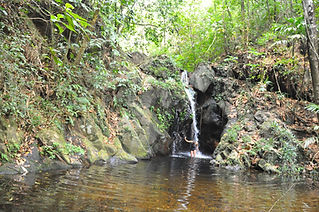 waterfall at Cockscomb Basin, Belize.jpg