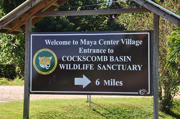 Cockscomb Basin, Jaguar preserve in Belize.JPG
