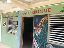 Chocolate making tour from Hopkins, Belize