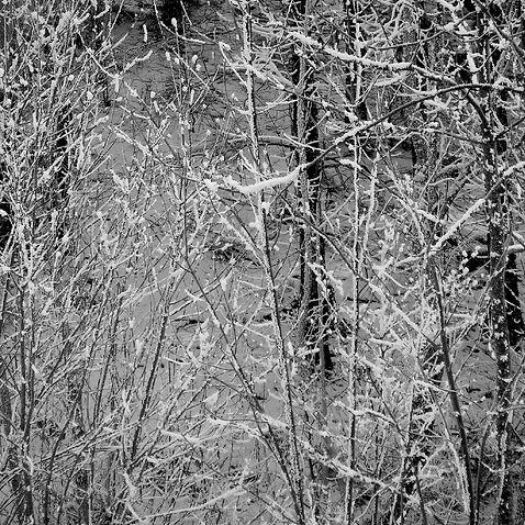 image1_snow.jpg