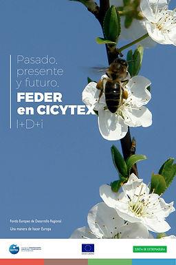 expo-cicytex.jpg