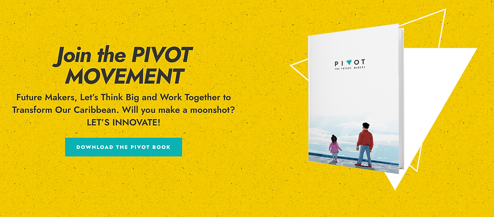 Moonshot definition from the Pivot Movement