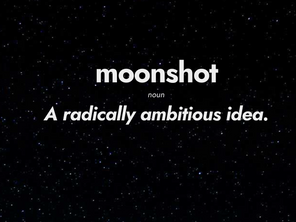 Professional firsts and Moonshot thinking: Working with The Pivot Movement