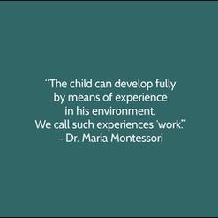 Montessori Quote.png