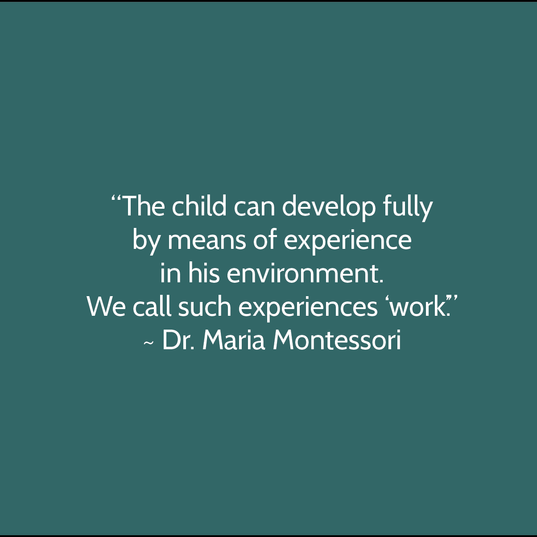 Montessori Quote.png