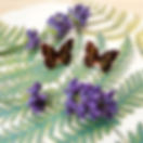 There's butterflies in the garden (finally!) I love when they start to emerge, a true sign that the