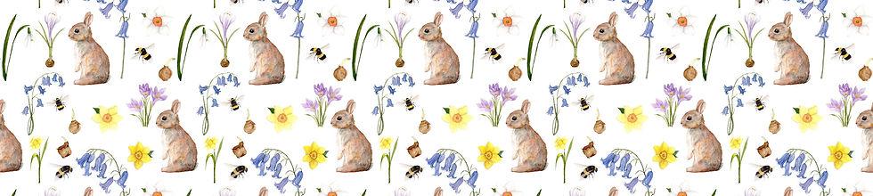 bunny-website-strip-images.jpg