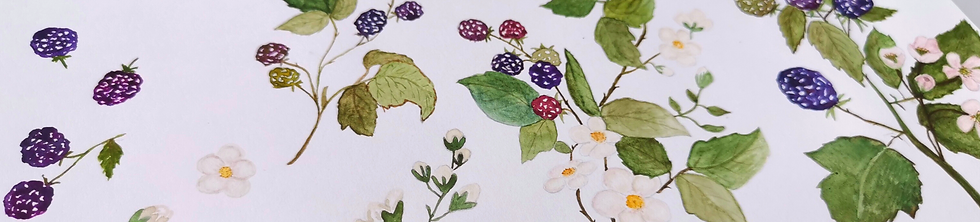 berry paintings 2.png