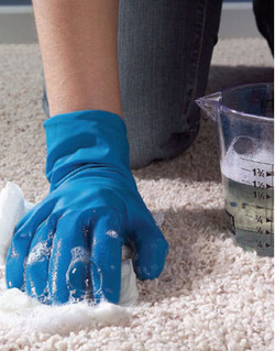 Carpet Cleaning-Stain