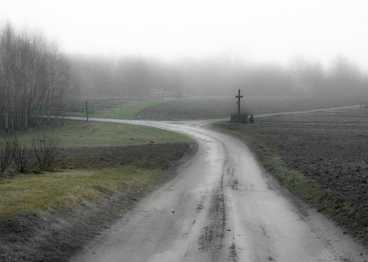 """Zdjęcie z tomiku wierszy """"Dopóki ptaki śpiewają"""" Małgorzata Chomont, 2019 r. """"Cisza""""  Fragment wiersza:  """" Szukałam wiatru w polu, a ciszę tu znalazłam. Stała na rozstaju, taka niezdecydowana. Przycupnęła przy drodze, w płaszczu nazbyt dużym, jakby chciała okryć kogoś, kto spokoju szuka i drogę zagubił..."""""""