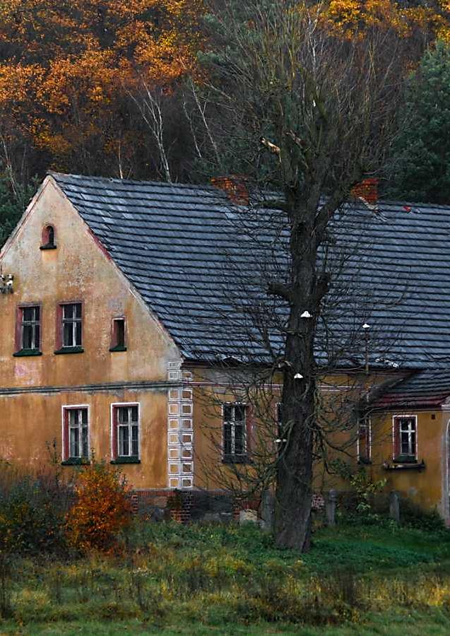 Lubuskie domy