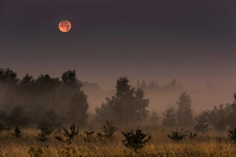 Najdłuższe zaćmienie księżyca w XXI wieku 27/28.07. 2018 r.