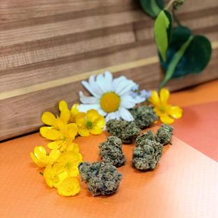 CARAMELO  19.65% THC (Sativa) $14g