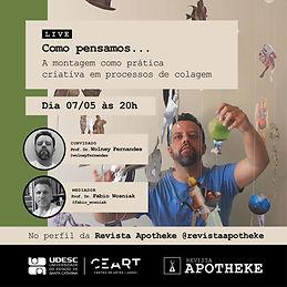 Live_Wolney_Revista_APotheke_Prancheta 1