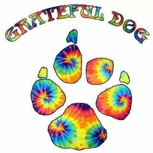 Grateful Dog Family