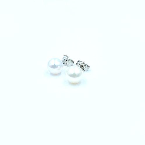 Λευκόχρυσα Σκουλαρίκια Μαργαριτάρια Π.ΣΚ001681