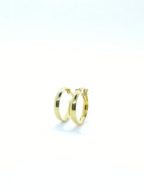 Χρυσοί Κρίκοι Π.ΣΚ001516