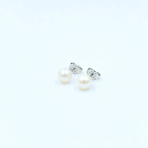 Λευκόχρυσα Σκουλαρίκια Κ14 με Μαργαριτάρια Π.ΣΚ001683