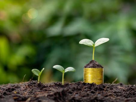 Marketing + duurzaamheid = Impact + omzet