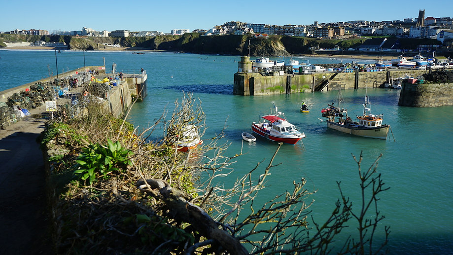 Newquay harbour | things to do in Newquay | Hendra Croft Farm