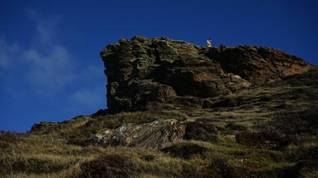 Rocks | Wheal Coates | Things to do near Newquay | Hendra Croft Farm