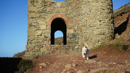 Front of The Towanroath | Wheal Coates | Things to do near Newquay