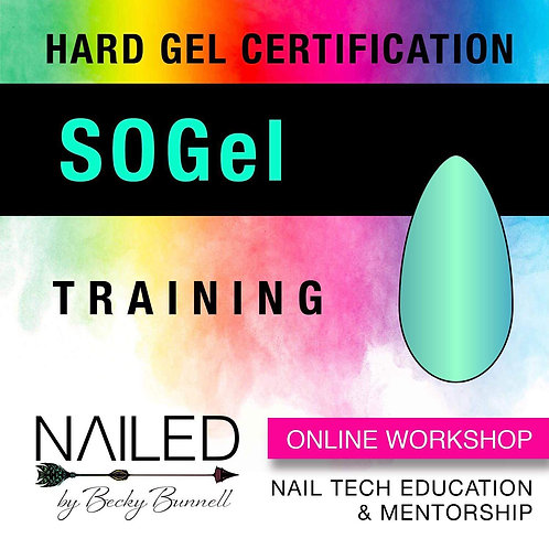 SoGel Online Workshop