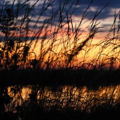 Beautiful Kent Sunset
