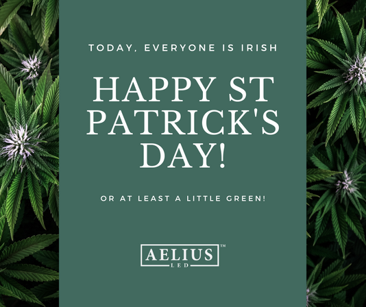 Is Cannabis Legalization Changing How We Celebrate This Classic Irish Holiday?