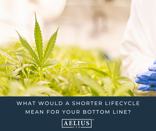 WHAT WOULD A SHORTER LIFE CYCLE MEAN FOR YOUR BOTTOM LINE?