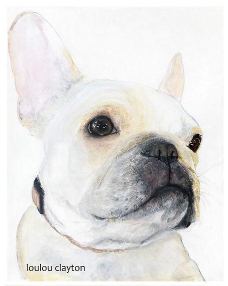 good french bulldog.jpg