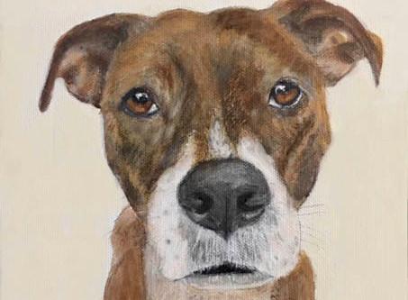 LouLou Clayton Custom Pet Portrait Artist Exhibits, Events & Portrait Special!