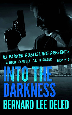 Into the Darkness by Bernard Lee DeLeo