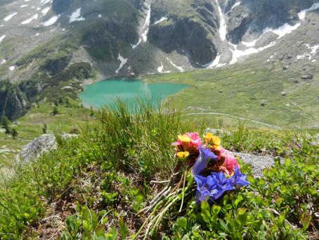 Hütten- und Bergseewandern