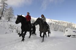 reiten-im-winter-_andreas-neuschitzer-pr