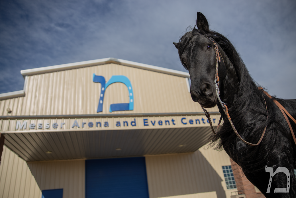 Messer Arena 12_Logo.png