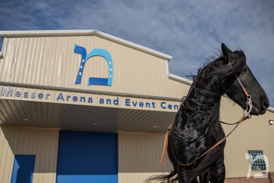 Messer Arena 11_Logo.png