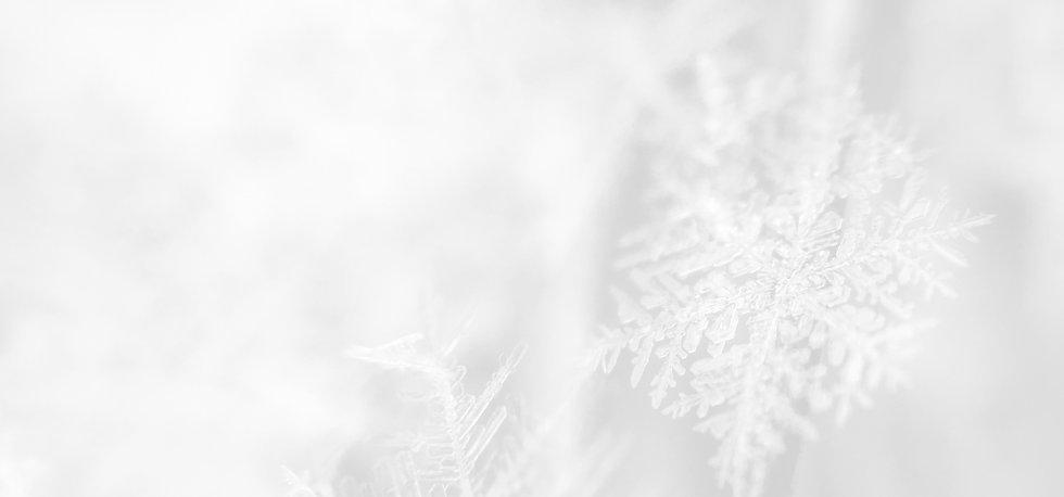 Snowflake_edited_edited.jpg