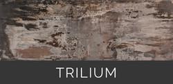 Dekton Trilium Tabla