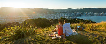 wine-couple-having-picnic-7456-Mount-Vic