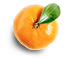 Tangerine with shadow.png