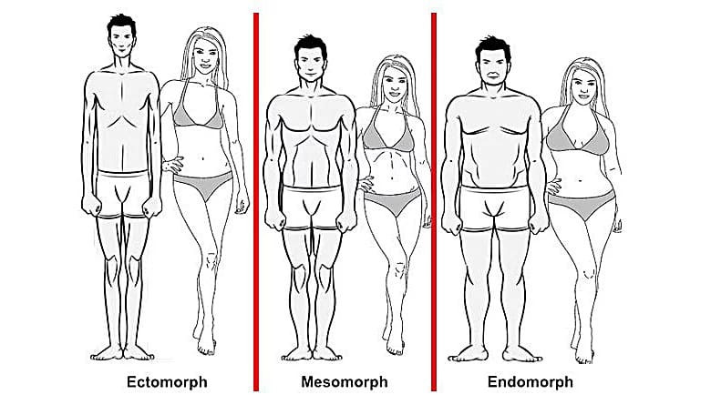 types of body you have