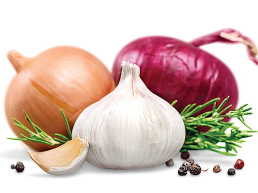 Onion and Garlic as Natural Insecticide