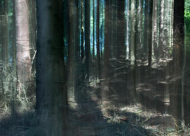 Green_Curtain©Joanna_Vortmann_(8)
